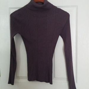 Body Central Turtleneck Sweater